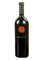 Bodega Numanthia-Termes Termanthia Toro 750ML Bottle