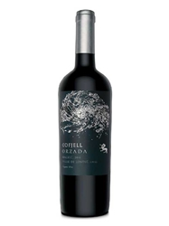 Odfjell Orzada Malbec Lontue Valley 2016 750ML Bottle